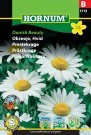 Prestekrage 'Danish Beauty' (Leucanthemum vulgare) thumbnail